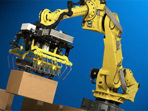 Robotic Case Palletizer