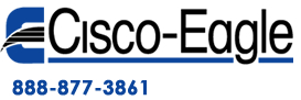 Cisco Eagle Logo