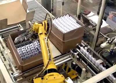 End of line case packing robot with conveyor
