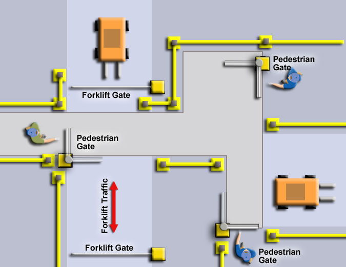 Multiple Gate Aislecop System For Pedestrians And Forklift