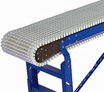 Plastic Chain Sanitary Conveyor