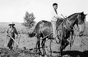 1941 - Plowing a field