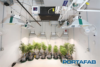 Reflective panels in a modular cannabis cultivation room